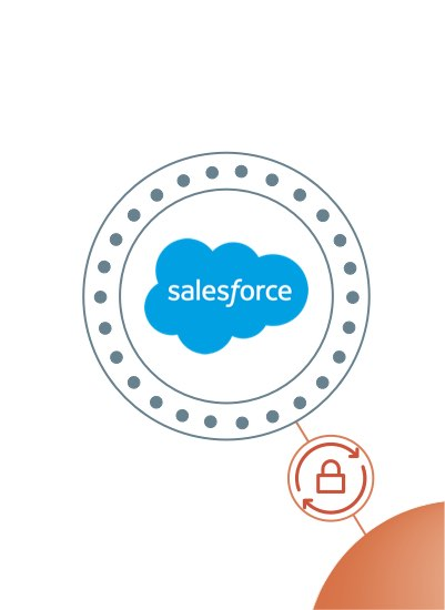 Salesforce Endpoints